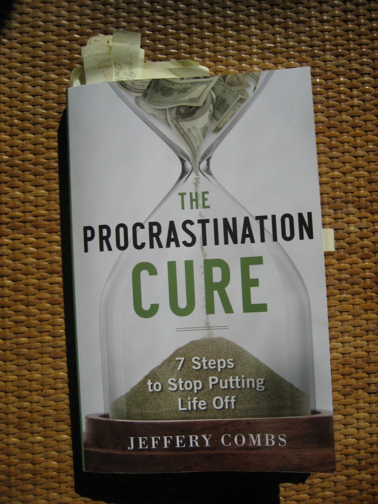 The Procrastination Cure - 7 Steps to Stop Putting Life Off by Jeffery Combs